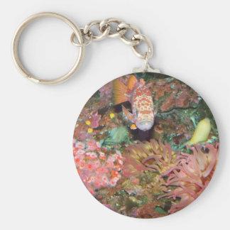Colorful Marine Life Basic Round Button Key Ring