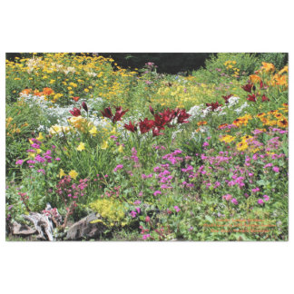 Colorful Mid Summer Gardens! Tissue Paper
