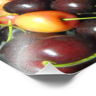 Colorful Mixed Cherries Food Photography Prints Photograph