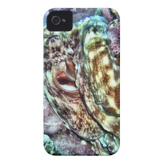 Colorful Octopus Case-Mate iPhone 4 Case