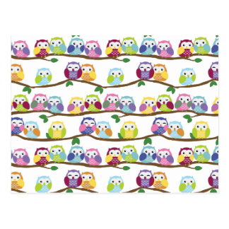 Colorful owls on a branch post card