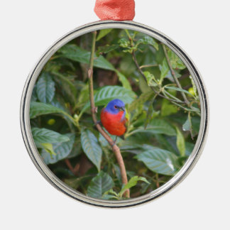 Colorful Painted Bunting Bird Silver-Colored Round Decoration