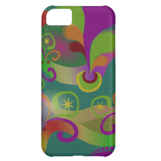 Colorful Paisley iPhone 5,  Case iPhone 5C Cases