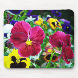 Colorful Pansies Mouse Mat