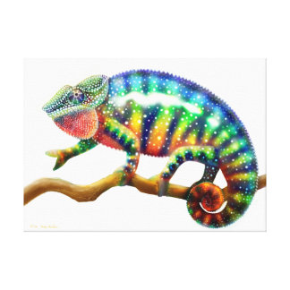 Colorful Panther Chameleon Lizard Wrapped Canvas Canvas Prints