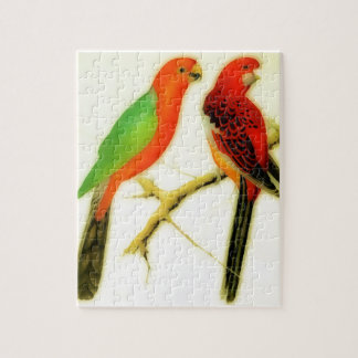 colorful parakeets - watercolor jigsaw puzzle
