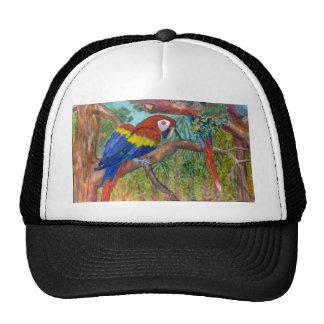 Colorful Parrot Hats