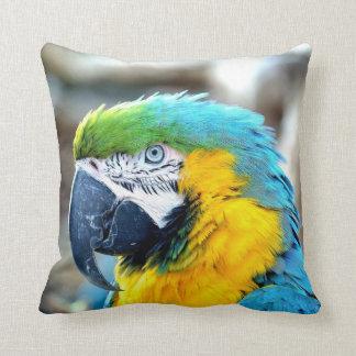 Colorful Parrot - Pillow