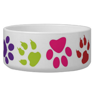 Colorful Paw Prints on Dog Bowl