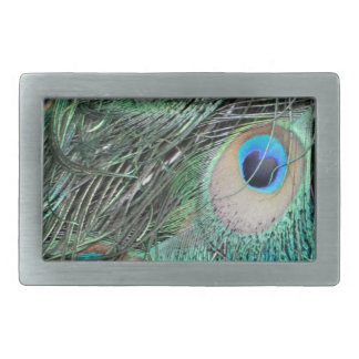 Colorful Peacock Eyes Rectangular Belt Buckles