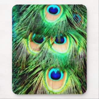 Colorful peacock feathers mouse pad