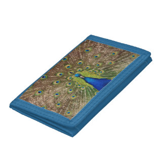 Colorful peacock print wallet