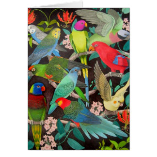 Colorful Pet Parrots of the World Card