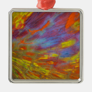 Colorful Petrified Wood close-up Silver-Colored Square Decoration