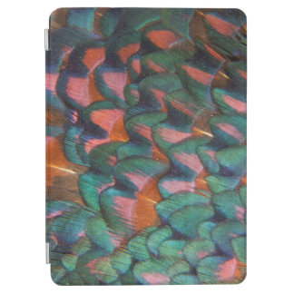 Colorful Pheasant Feathers Abstract iPad Air Cover