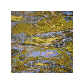 Colorful Reflections. Canvas Print
