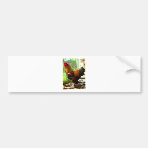 Colorful Rooster Bumper Sticker