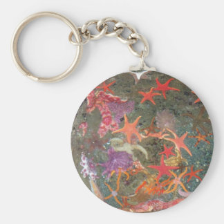 Colorful Sea Stars Basic Round Button Key Ring