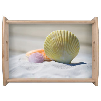 Colorful Seashells in the Sand Serving Tray