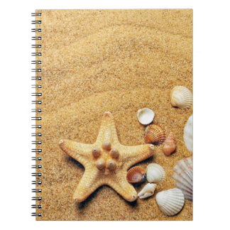 Colorful Seashells Spiral Notebook