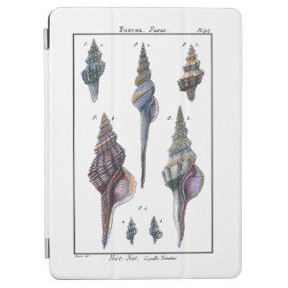 Colorful Seven Seashells iPad Air Cover