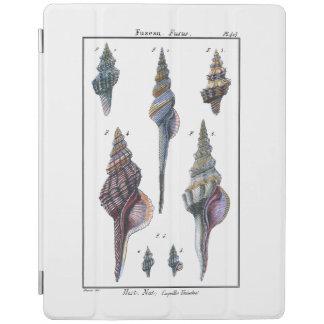 Colorful Seven Seashells iPad Cover