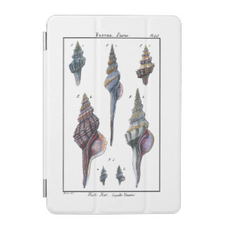 Colorful Seven Seashells iPad Mini Cover