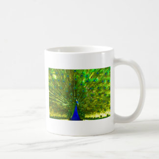Colorful Showoff Mugs