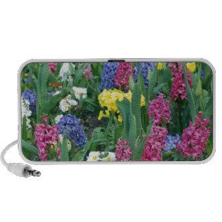 Colorful Spring Flowers Laptop Speaker