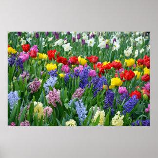 Colorful spring garden poster