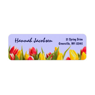 Colorful Spring Tulips Blue Background Flowers