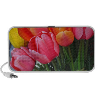 Colorful spring tulips mini speakers