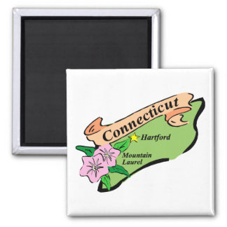 Colorful State of Connecticut Map Tees, Gifts Square Magnet