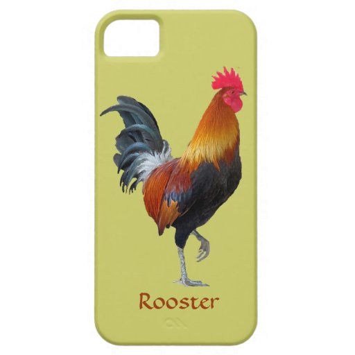 Colorful Strutting Rooster iPhone 5 Casemate Case For iPhone 5/5S