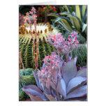 Colorful Succulent Garden Card