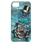 Colorful textured owl illustration on teal base. iPhone 5C cover