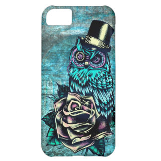 Colorful textured owl illustration on teal base. iPhone 5C case