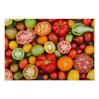 Colorful Tomatoes Poster