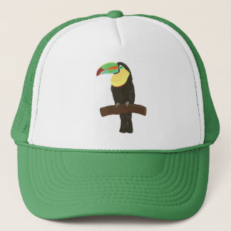 Colorful Toucan Painting on Hats