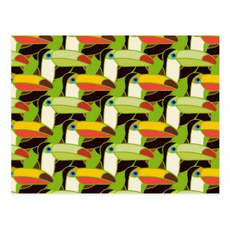 Colorful Toucans 2 Postcard