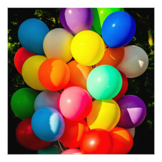 Colorful Toy Balloons Photograph