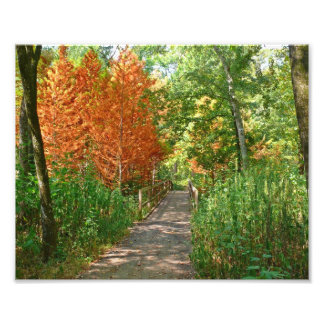 colorful trail Photo