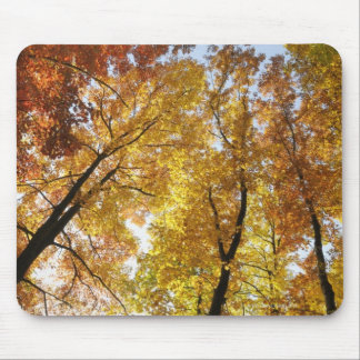 Colorful Trees Mouse Mat