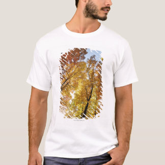 Colorful Trees T-Shirt