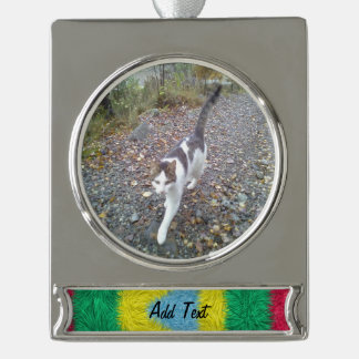 Colorful trendy art silver plated banner ornament
