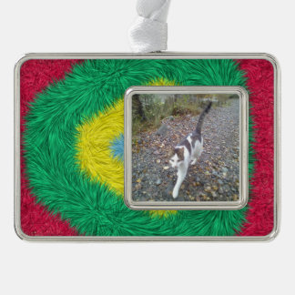 Colorful trendy art silver plated framed ornament