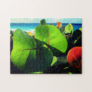 Colorful Tropical Relaxation Jigsaw Puzzle