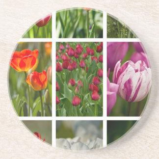 Colorful Tulips Coaster