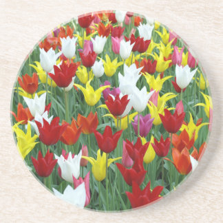 Colorful tulips drink coaster