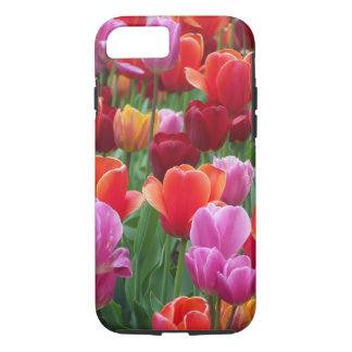 Colorful Tulips iPhone 8/7 Case